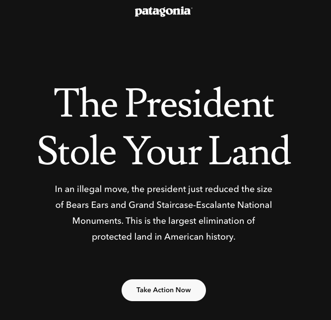 Patagonia Takes a Stand